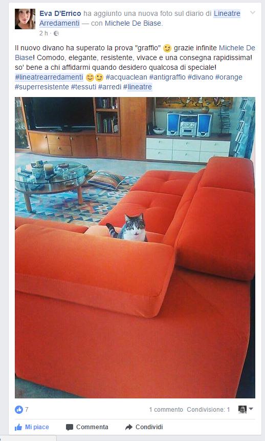 Un divano a prova di gatto lineatre arredamenti alberobello - Gatto divano microfibra ...